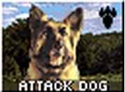Attack Dogs